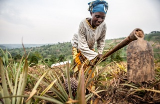 African Green Fund: Kigali Forum Turns Focus on Small Farmers