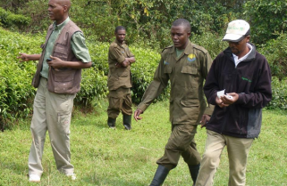 Rusizi Herders Task RDB over Tough Fines