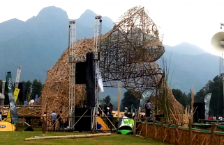 Bamboo Gorilla Stage Irresistible at Kwita-Izina