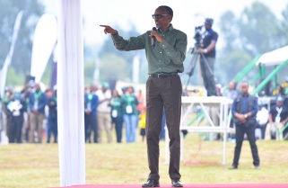 When Kagame Bowed to Silverback 'the King and President'