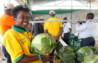 Rwandan Innovators Target Funders at Agriculture Week