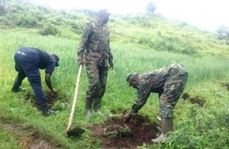 Rwandans Plant 30 million Trees To Save Environment