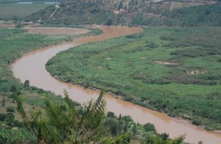 Quality of Nyabarongo Water Deteriorating – Research