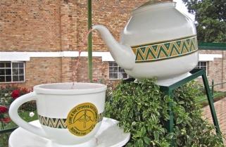 Sorwathe Launches New $1M Green Tea Factory